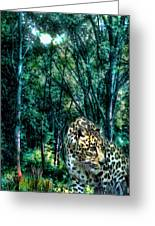 The Leopard Is Hungry Greeting Card