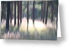 The Light Of The Forest Greeting Card