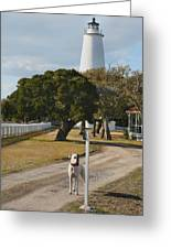 The Lighthouse Guardian Greeting Card by Steven Ainsworth