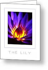 The Lily Poster Greeting Card