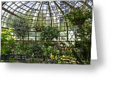 The Lincoln Park Conservatory Chicago-001 Greeting Card