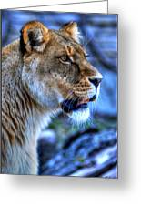 The Lioness Alert Greeting Card