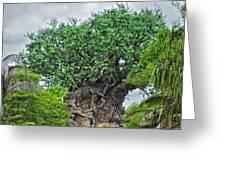 The Living Tree Walt Disney World Greeting Card