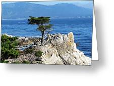 The Lone Cypress Greeting Card