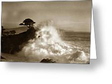 The Lone Cypress Midway Point Pebble Beach  Lewis Josselyn  Circa 1916  Greeting Card
