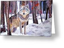 The Lone Wolf Greeting Card by David Lloyd Glover