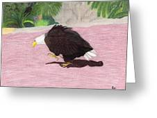 The Lonely Eagle Greeting Card by Bav Patel