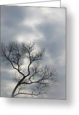 The Lonely Tree Greeting Card