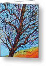 The Looking Tree Greeting Card