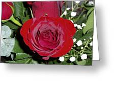 The Lovely Rose Greeting Card