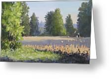 The Lower Field Greeting Card
