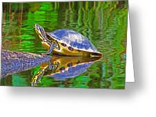 The Magnificence Of Turtle Greeting Card