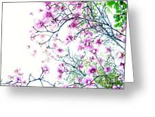 The Magnolia Fades Greeting Card