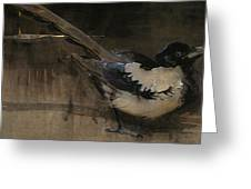 The Magpie Greeting Card