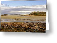 The Maine Coast Greeting Card by Skip Willits