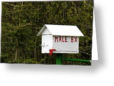 The Male Box Greeting Card