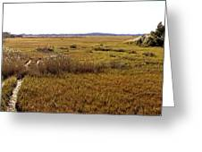 The Marsh At Cape Henlopen Greeting Card