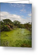 The Marsh At Cumberland Greeting Card
