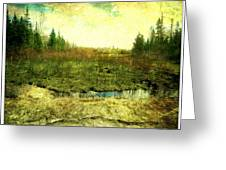 The Marshland  Greeting Card by Dianne  Lacourciere