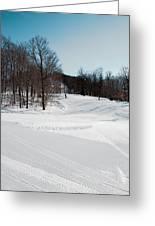 The Mccauley Mountain Ski Area Greeting Card
