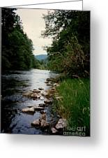 The Mckenzie River Greeting Card