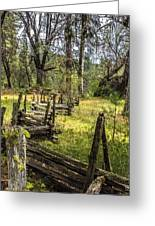 The Meadow Fence Greeting Card