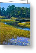 The Meandering Moose River - Old Forge New York Greeting Card by David Patterson