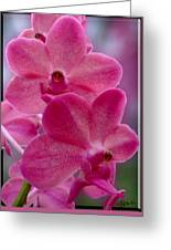 The Meaning Of Pink Greeting Card