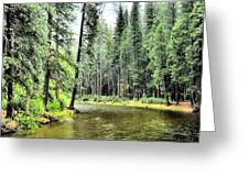The Merced River  Greeting Card