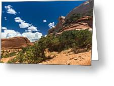 The Moab High Desert Greeting Card