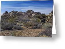 The Mojave Desert Greeting Card