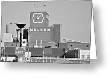 The Molson Clock Montreal Greeting Card by Reb Frost