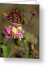 The Monarch 2 Greeting Card