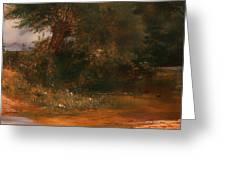 The Moor Hen's Haunt Greeting Card
