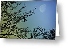 The Morning Moon Greeting Card
