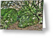 The Mossy Creatures Of The Old Beech Forest Greeting Card