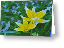 The Most Beautiful Flowers Greeting Card