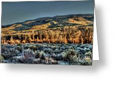 The Mountainsides Greeting Card