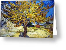 The Mulberry Tree Greeting Card