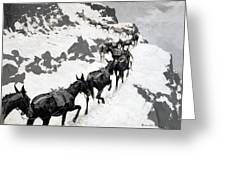 The Mule Pack Greeting Card