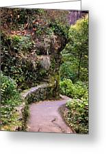 The Narrow Path Greeting Card