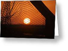 The Netted Sun Greeting Card
