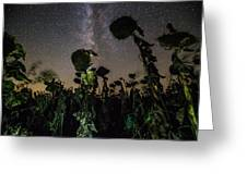 The Night Of The Triffids Greeting Card