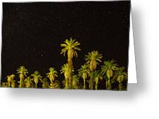 The Night Sky Over Death Valley Greeting Card
