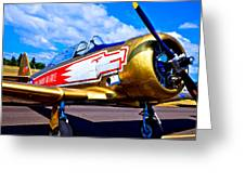 The North American T-6 Texan Airplane Greeting Card by David Patterson