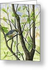 The Nuthatch Greeting Card