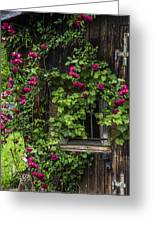 The Old Barn Window Greeting Card