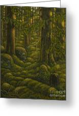 The Old Forest Greeting Card