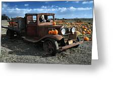 The Old Pumpkin Patch Greeting Card