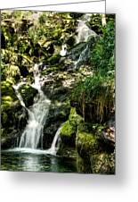 The Old Troll Caught By The Sun Admiring The Forest Waterfall Greeting Card